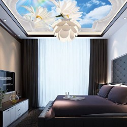 Mural classical frame with ornaments sky and rainbow ceiling