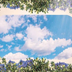 Photo Wallpaper ceiling with 3d effect and oval frame