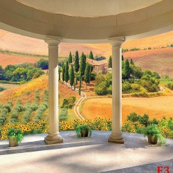 Wallpapers terrace vault columns with a landscape of Tuscany
