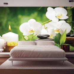 Wallpapers spa composition with bamboo and white orchids