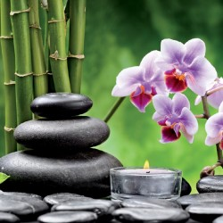 Wallpapers spa composition with orchid branch