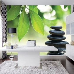 Photo mural bamboo and black spa stones