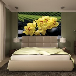 Photo mural spa stones and yellow orchids