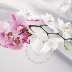 Photo mural twig orchid in 2 colors of silk background with pearls