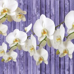 Photo mural white orchid on a purple wooden beams