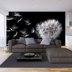 Photo mural dandelion in black background