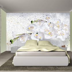 Photo mural orchids branch on grey water drops