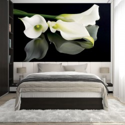 Photo mural white flowers on a black background mirror