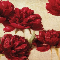 Photo mural gorgeous peonies beige background