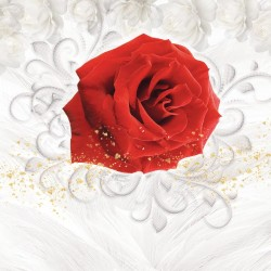 Photo mural red rose and white roses in 2 variants