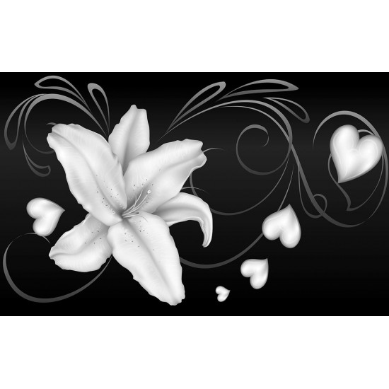 Photo mural abstract white lilies on 2 colors background