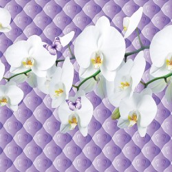 Wall mural Twig white orchid on upholstery effect with crowns