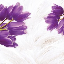 Photo mural purple tulips on a soft background with feathers