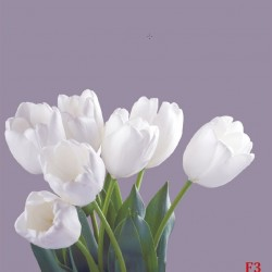 Photo mural bouquet from white tulips on purple background