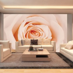 Photo mural bright orange big rose