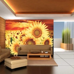 Photo mural big sunflowers on orange field