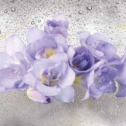 Photo mural purple flowers on water drops background