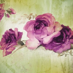 Wall murals painted composition with purple roses on background in 2 colors