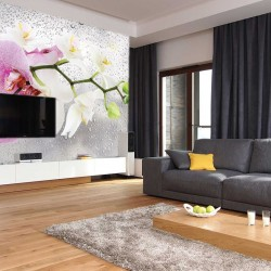 Wall murals twig orchid on background water drops