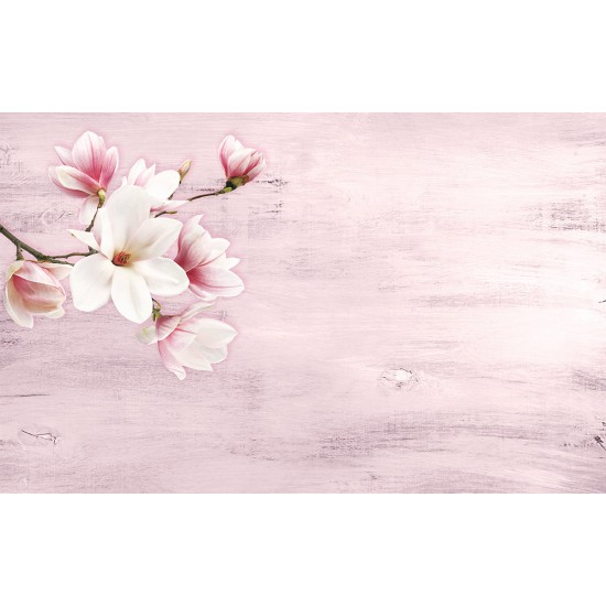 Magnolia beautiful twig on a grunde background in 2 colors