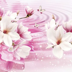 Wallpapers pink composition water reflection with lily