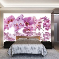 Photo murals mix of different orchid twigs with water reflection