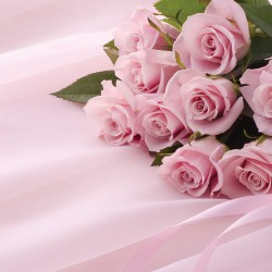Photo murals bouquet of pink roses on a satin base