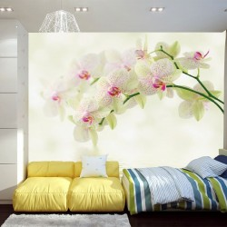 Photo murals tender branch green orchid and water