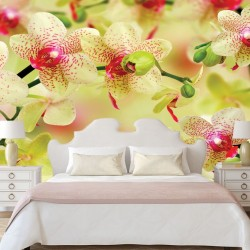 Wall mural branches yellow orchids