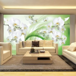 Wall murals white orchids on an abstract green background