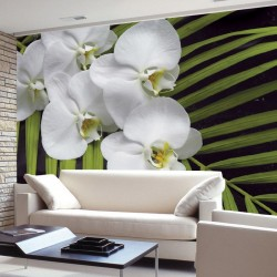 Wall mural orchid branch with green fern