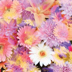 Photo mural soft bouquet of colorful flowers