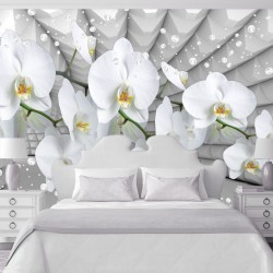 Wallpapers white orchid grey tunnel with bubbles