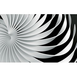 Photo mural Abstract 3d figure in white and black