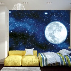 Wall mural view of the planet earth and night sky