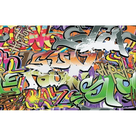 Photo mural graffiti in grey and green