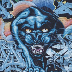 Wall murals brick wall witth graffiti and jaguar in 2 colors