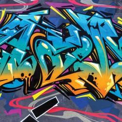 Wall mural graffiti plastering wall in 2 colors