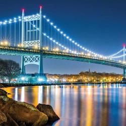 Photo mural Illuminated night view of the bridge Kennedy New York 2 col.