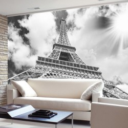 Photo mural Eiffel tower in grey background and sun