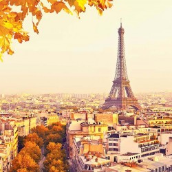 Wall murals panoramic view of Paris and the Eiffel tower leaves