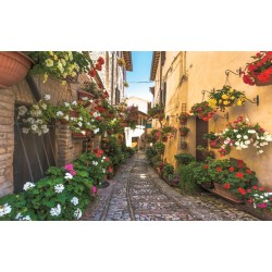 Wallpapers mural retro street with flowers 2