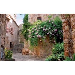 Wallpapers mural antique house with flowers