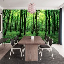 Photo mural green forest view 2