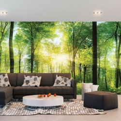 Photo mural green forest view 3
