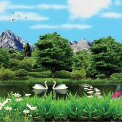 Wallpapers 3D view of lake and swans