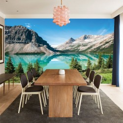 Wall mural Mountains overlooking the lake with pine trees