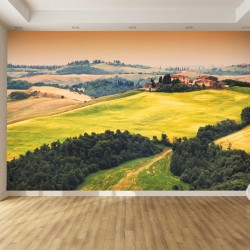 Photo mural grass fields view in Toscana