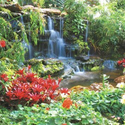 Photo mural garden waterfall with red plants