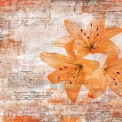 Wall murals art with inscriptions and flowers in gray and orange